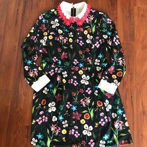 Ted Baker Tillena Hampton Collar Dress